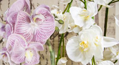 Mākslīgās puķes un mākslīgie ziedi